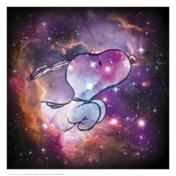 Charles M. Schulz | Reach For The Stars| Handnummeriert